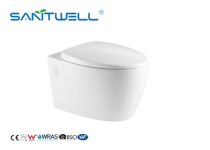 Dual Flush Fashionable Water Saving Toilets Wall Outlet Toilet With Full Pipe Glaze